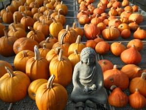 Pumpkin madonna  II